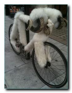 Тепло нужно и велосипеду.
