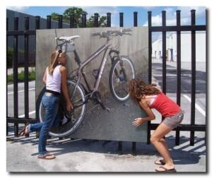 Обожают велосипед