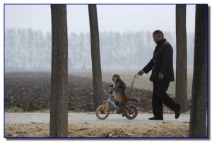 Макака на велосипеде учится ездить